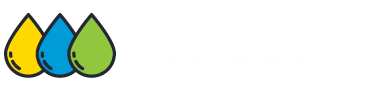 Carpet Cleaning Seafordrise